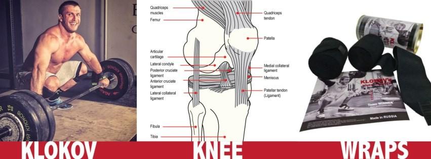 Klokov Knee Wraps